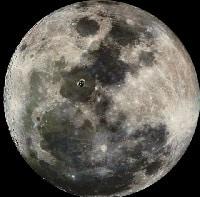 El conejo de la luna, un bonito mito corto