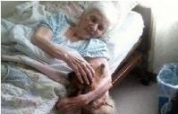 La Abuela y el Perro