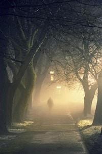 Noche cualquiera cuentos de terror